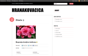 Nataly Kosut i Andrijana Stamenkovic 8-3